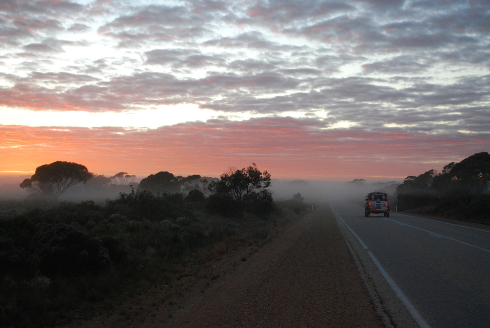 Driving at sunrise through the mist on the Nullarbor